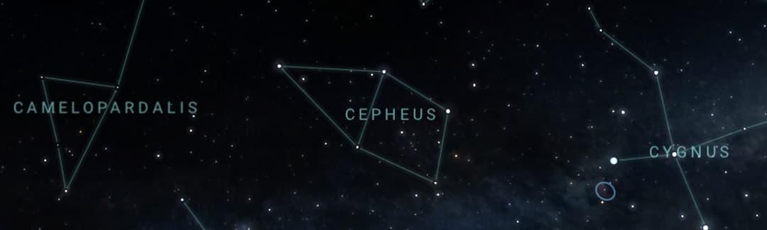 cepheus
